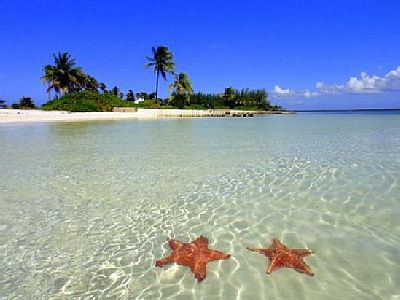 Visit Starfish Island
